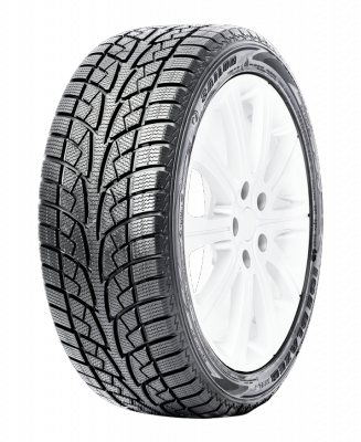 Ice Blazer WSL2 Tires